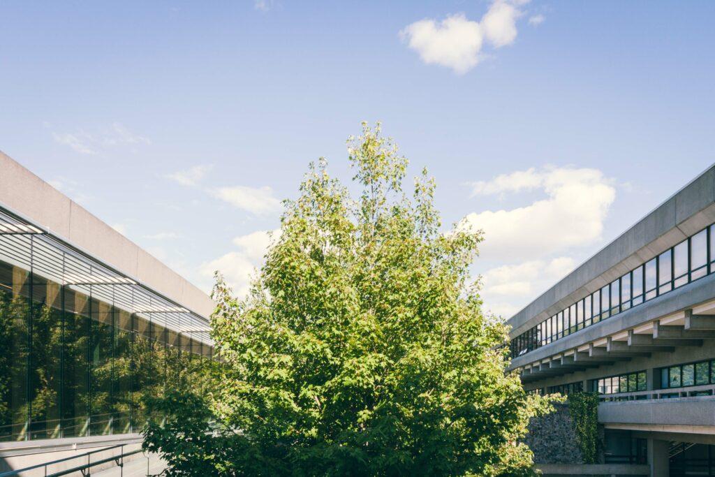 architecture Simon Fraser University photo Sacha Jennis